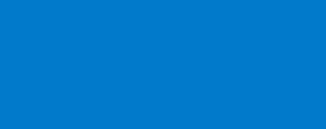 Netvisor logo